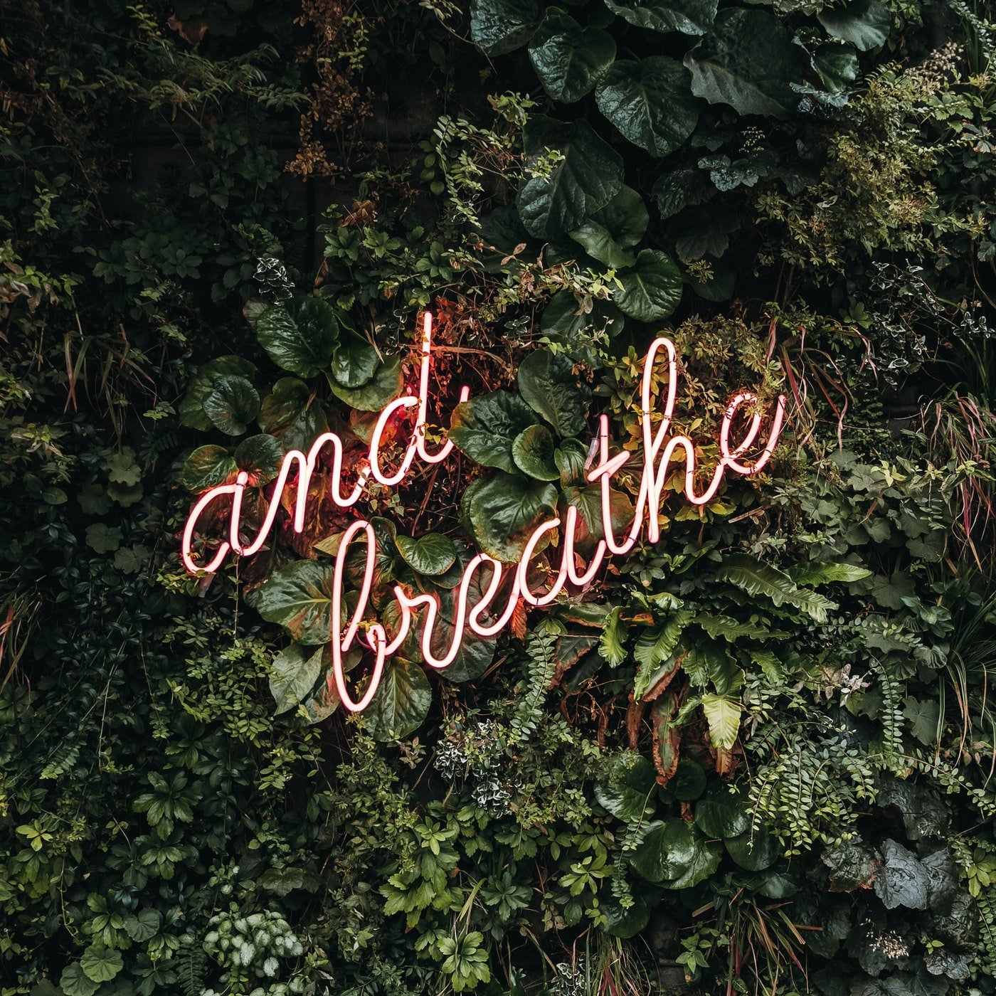 Why Controlled, Dynamic Breathing Will Change Your Life for the Better